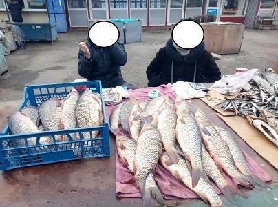 Рыбоохранный патруль вычислил нарушителей на харьковских рынках (Рыбнадзор)