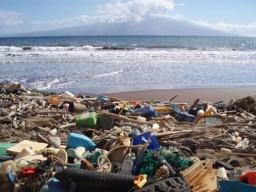 Через 15 лет Черное море превратится в мусорную свалку - экологи (ФОТО)