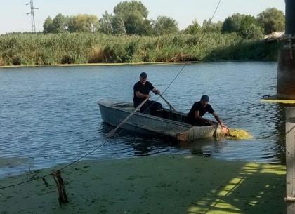 Балаклейский район: спасатели достали из воды утопленника