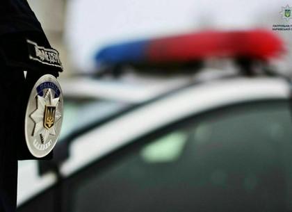 Избиение собаки: полиция ищет виновного и видетелей (ГУ НП)