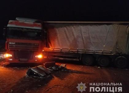 ФОТО: Под Харьковом столкнулись маршрутка и фура: полиция начала расследование (ГУ НП)