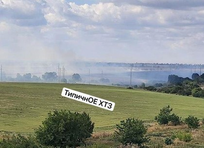 Рогань во мгле из-за пожара: полыхает сухостой (ФОТО, ВИДЕО)