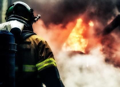 Пенсионер получил ожоги, пытаясь погасить пожар