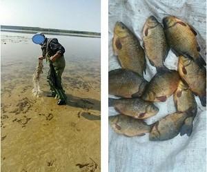 ЧетЫре килограмма краснокнижных карасей браконьер выловил запрещенной сетью (Рыбнадзор)