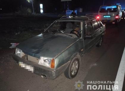Смертельное ДТП: дедушка погиб на пешеходном переходе (МВД)