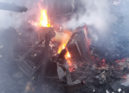 ФОТО: Пара нарядов спасателей боролась с последствиями пожара в Питомнике (ГСЧС)