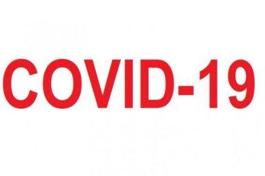 За сутки в области диагноз COVID-19 подтвержден у 531 человека