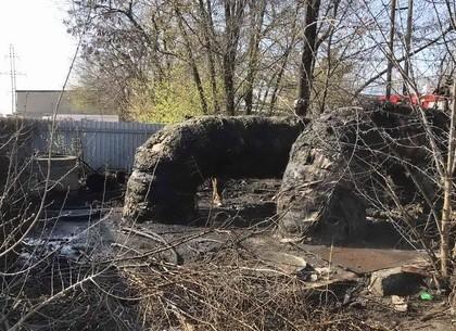 Борцы с сухостоем пошли в наступление на гаражи, теплотрассы и едва не спалили новенькое авто на ули