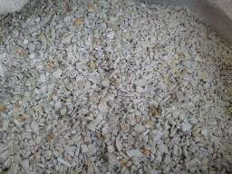 Переработчик вторичного сырья проводит закупку в больших количествах на постоянной основе дробленног